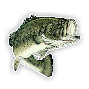 Largemouth Bass Fish  Die Cut Decal